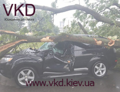 Хто відшкодує збитки за дерево яке впало на авто?